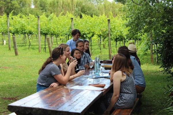 Brisbane City Psychologists Wine Tour