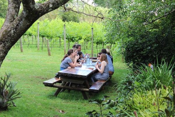 Brisbane City Psychologists Wine Tour 2
